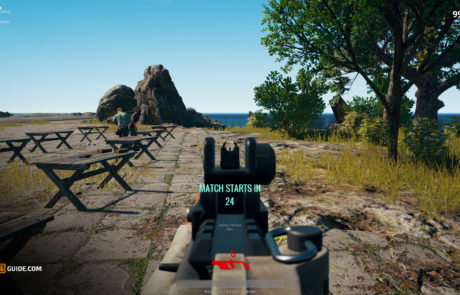 PUBG_vector_iron_sights_view